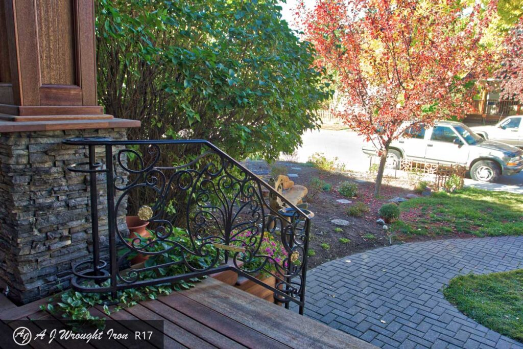 elegant iron railing from deck